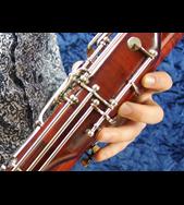 Outstanding 7000 series Heckel bassoon for sale | Double
