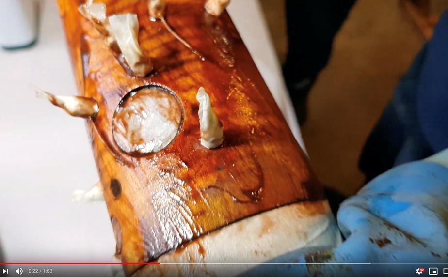 Watch: Restoring a Heckel Bassoon | Double Reed Ltd